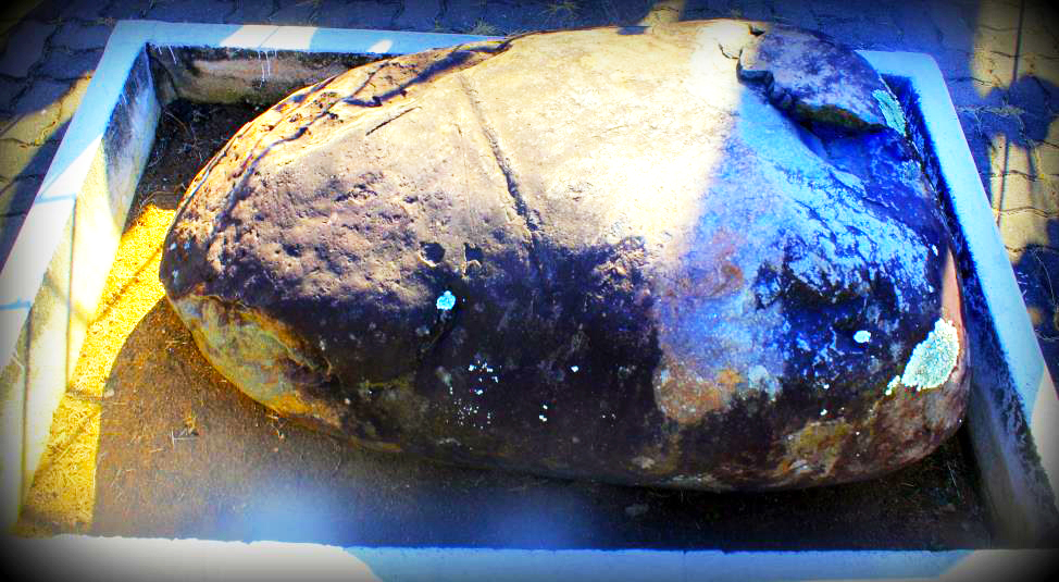 King Shaka – Τhe stone of death in KwaDukuza