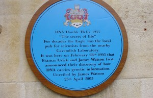 DNA – The first public mention of the discovery in Cambridge