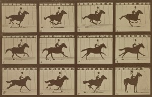 """The Horse in Motion – Muybridge's """"Flying Horse"""" gallops in Palo Alto"""