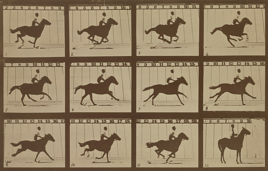 "The Horse in Motion – Muybridge's ""Flying Horse"" gallops in Palo Alto"