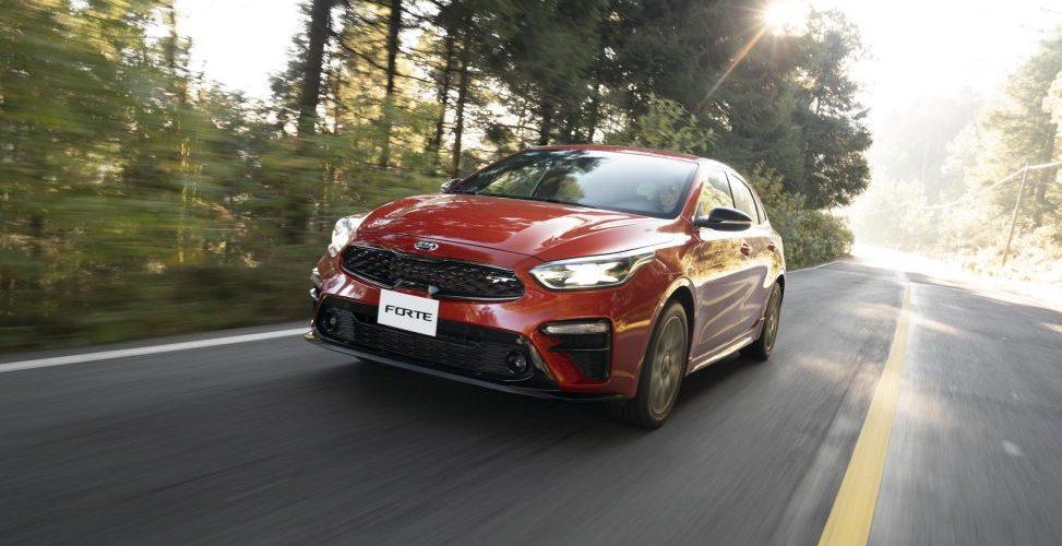 Se confirman muchos nuevos vehículos en 2019