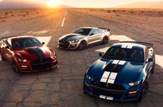 Llega a México el GT500 de Shelby, te decimos precios y versiones