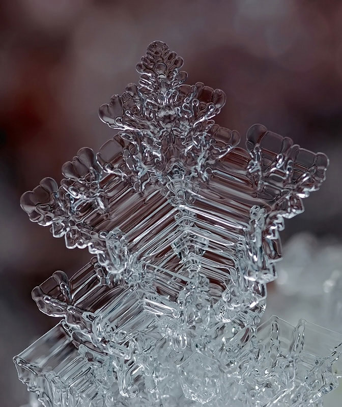 macro-photograph-of-a-snowflake-by-andrew-osokin-9