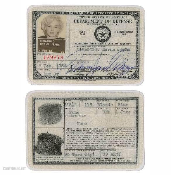 paszporty_znanych17