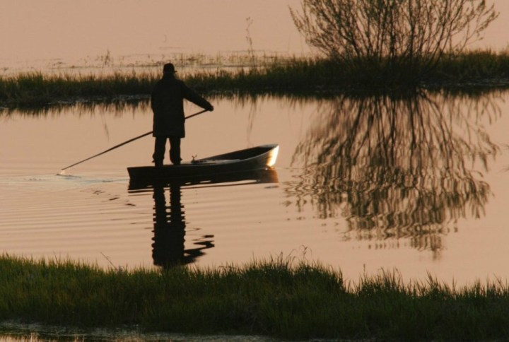 Biebrza River, Biebrza National Park - Burzyn area. A man in traditional fishing boat / Piotr Skórnicki / Agencja Gazeta