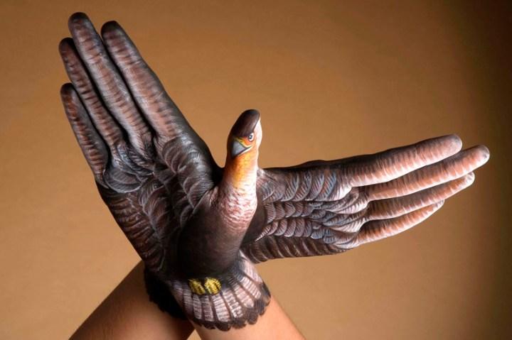 Falcon-2-hands1