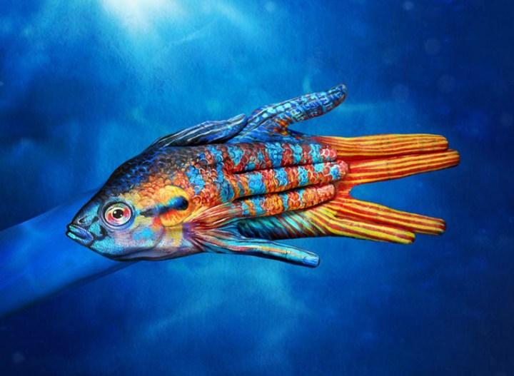 Paradise-Fish