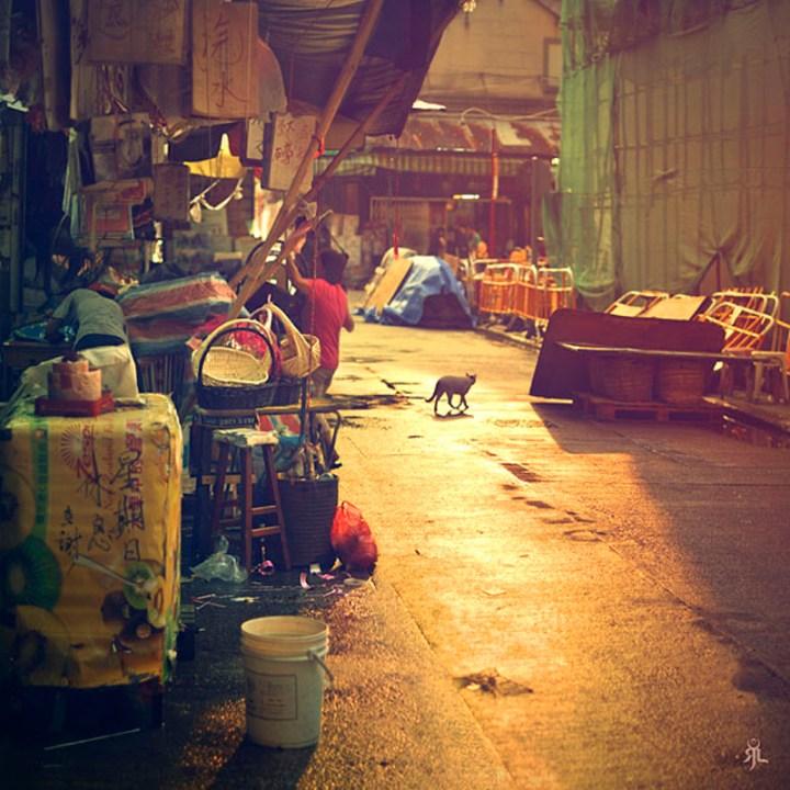 hongkong-sunlight