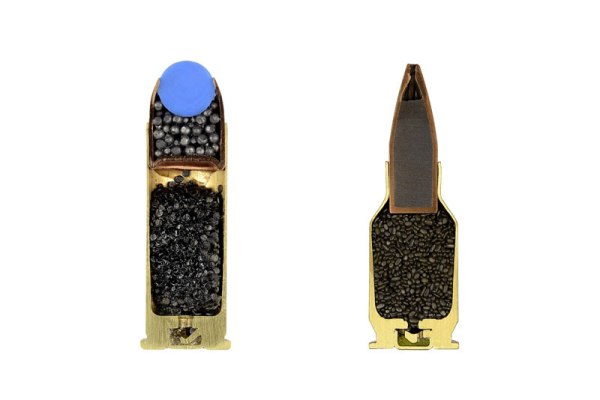 cross-sections-of-ammo-sabine-pearlman-3