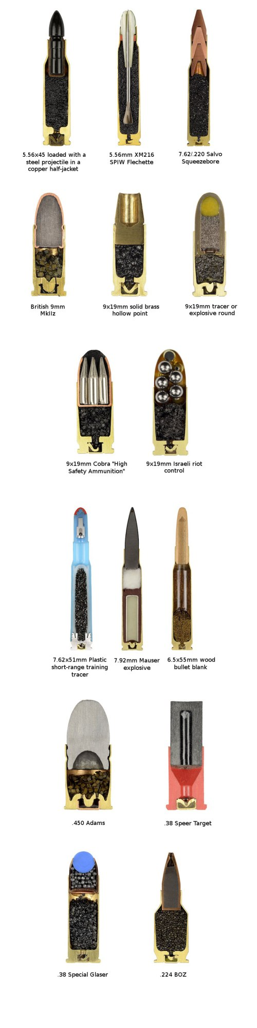 cross-sections-of-ammo-sabine-pearlman-7