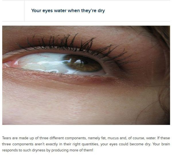 crazy_facts_about_your_eyes_16