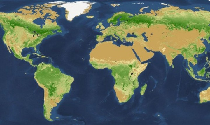This world map shows the Earth's vegetation.Source: NASA