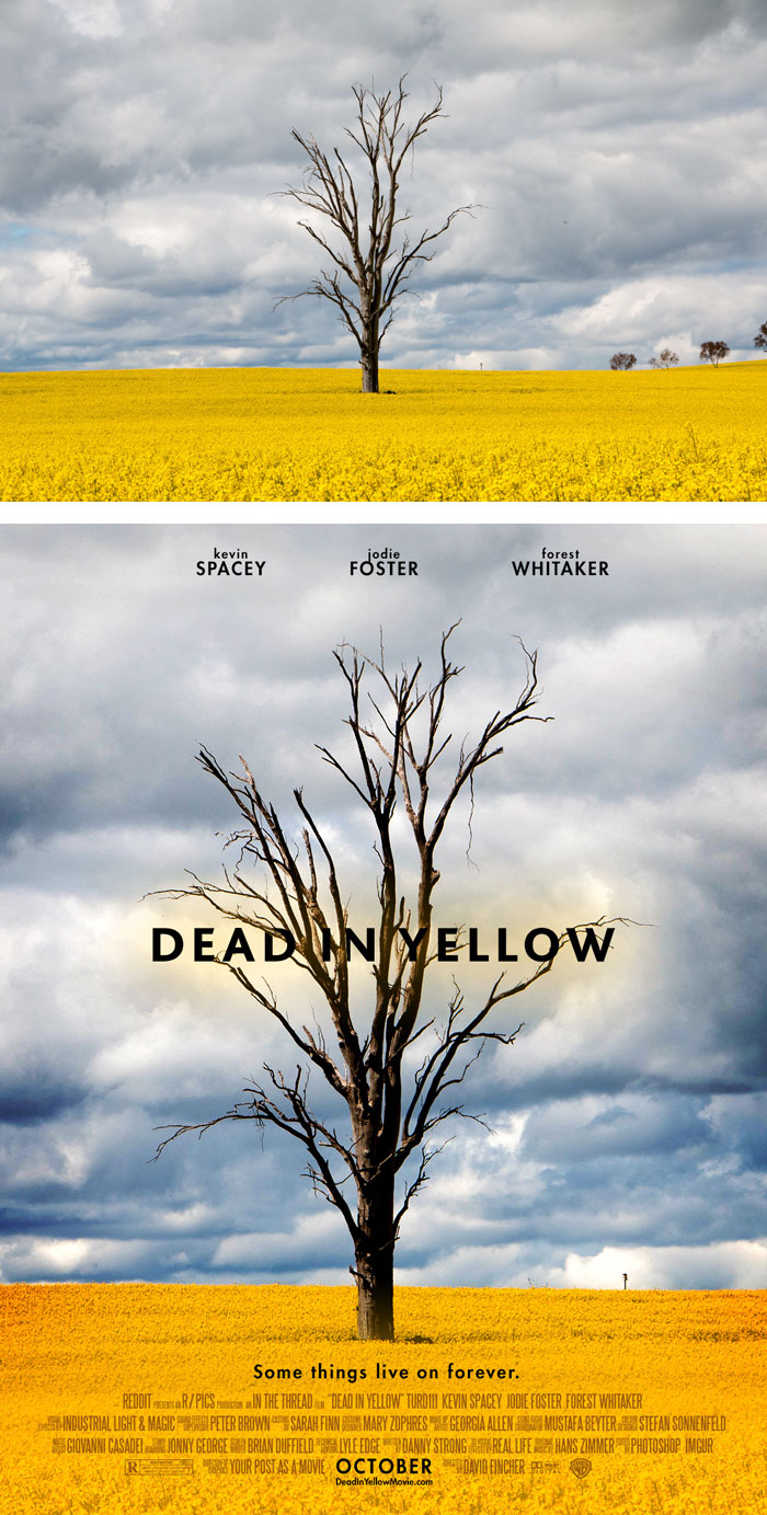 random-photos-turned-into-movie-posters-94__700