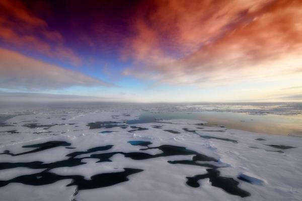 frozen-surface