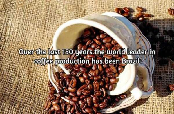 facts-about-coffee-16