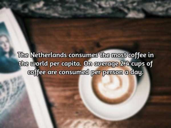 facts-about-coffee-12