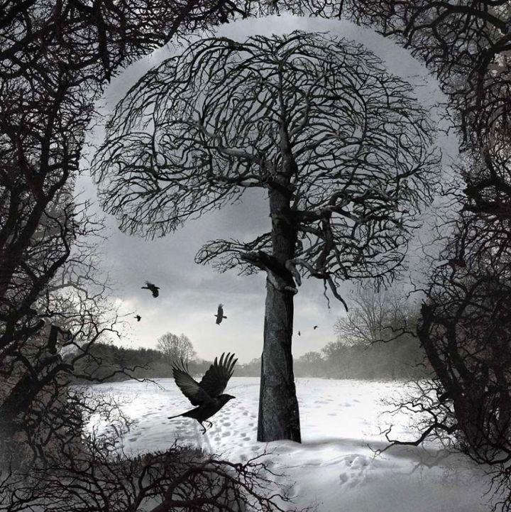 surreal-illustrations-poland-igor-morski-53-570de33b0ac2c__880