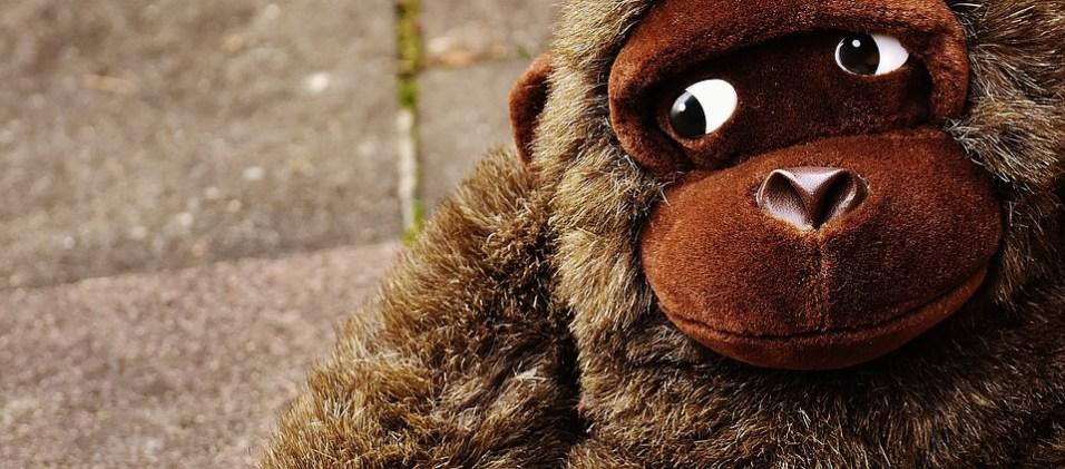 monkey-1821686_960_720
