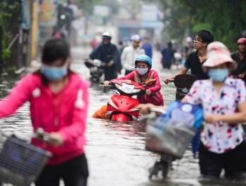 Người Sài Gòn ra đường bắt cá sau trận mưa lớn suốt đêm