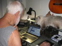 cats 005_3264x2448