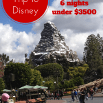 Disney on a Budget: 10 people, 6 nights, and 1 happy wallet
