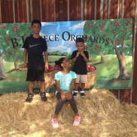 Apple Picking with the Family- Ellijay, GA
