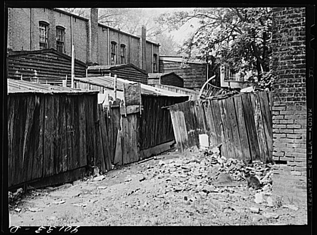 Negro slum area between D and C Streets off 1st Street, S.W. Washington, D.C. Most houses have five small rooms renting for twenty dollars and fifty cents a month, with rear wood kitchen shed, cold water, outdoor privy.  September 1941.    Marion Post Wolcott, photographer.