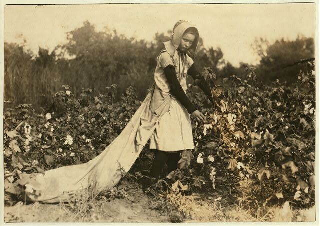 Callie Campbell, 11 years old, picks 75 to 125 pounds of cotton a day, and totes 50 pounds of it when sack gets full. No, I dont like it very much. Potawotamie County, Oklahoma.  1916 October 16.  Lewis Wickes Hine, photographer (Library of Congress)