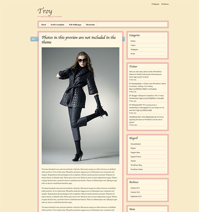 troy tumblr wordpress theme