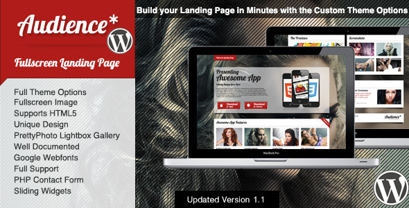 audience wordpress theme