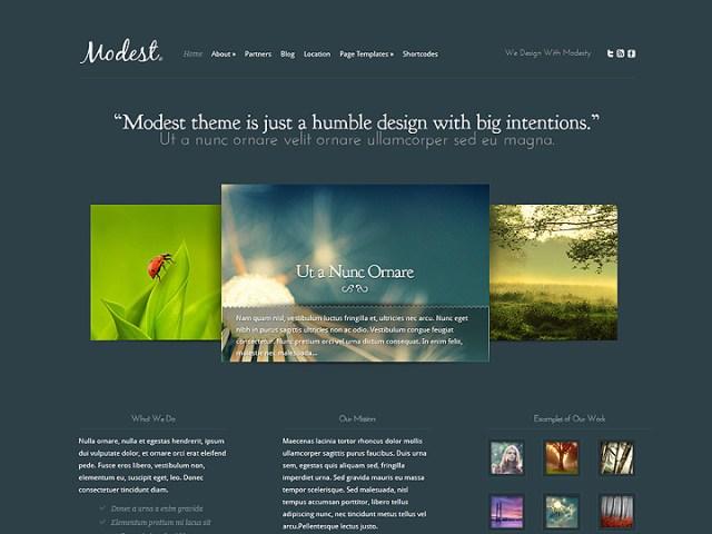 modest wordpress theme