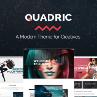 quadric wordpress modern theme