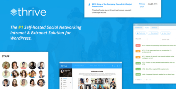 thrive wordpress social theme