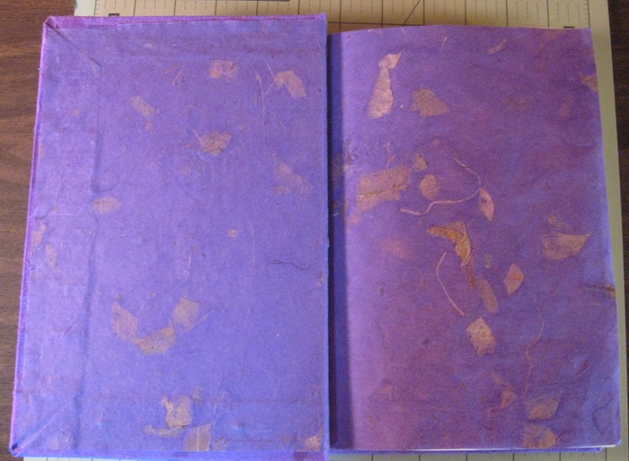 Inside cover and end paper of Thai mango paper