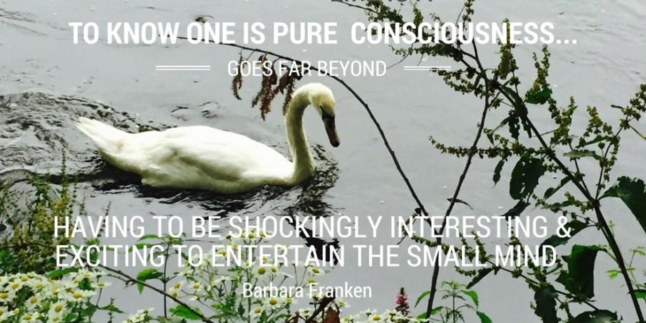 IAM PURE consciousness...