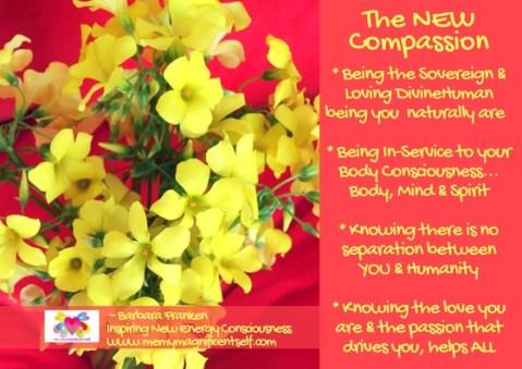 The NEW Compassion...