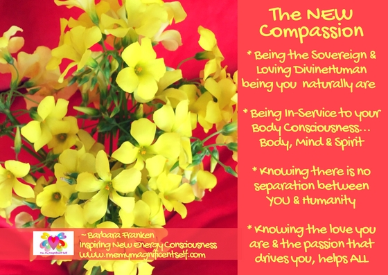 The NEW Compassion...