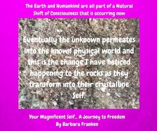 Th...e Earth & Humankind