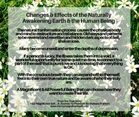 Changes and Effects of the Naturally Awakening Earth and the Human Being