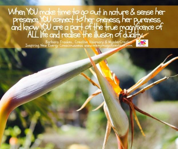 Sensing Nature...