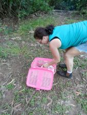 Relocating snakes into the wild and away from residential areas
