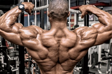 henri-pierre-ano-face-pulls-rear-delts_.jpg