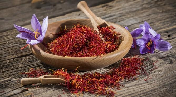 saffron-banner-1-1