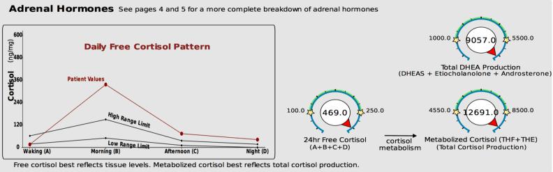 Cortisol variation2