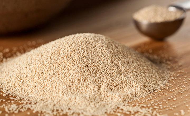 Brewers yeast dopamine uridine MenElite