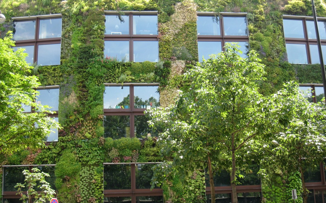 Top 10 Cities for Global Green Buildings