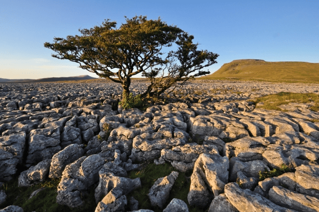 Yorkshire Dales