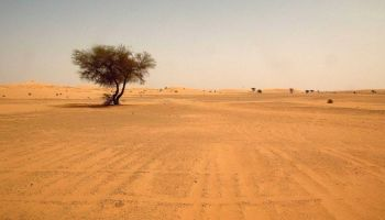 Researcher have discovered a way to produce Water in the Desert from thin air