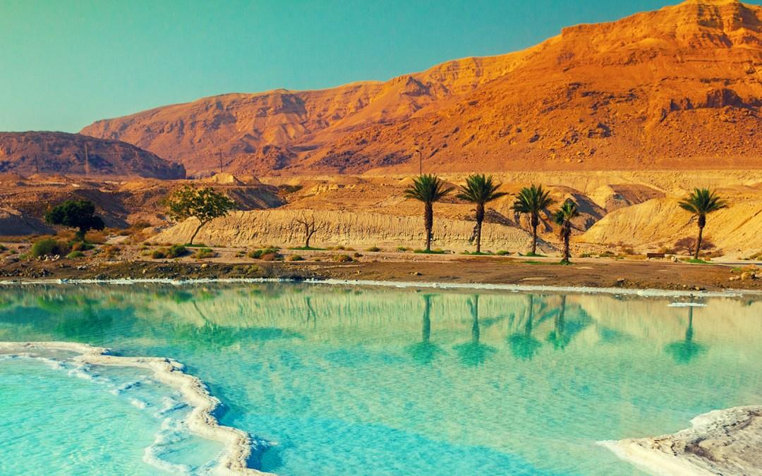 MENA region hosts the world's elite today