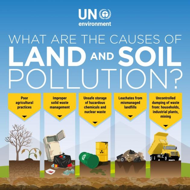 Soil pollution a risk to our health and food security